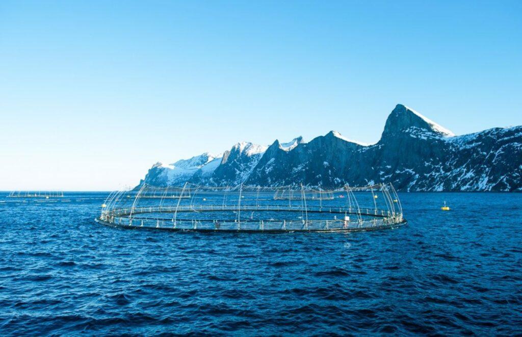 open water fish farm